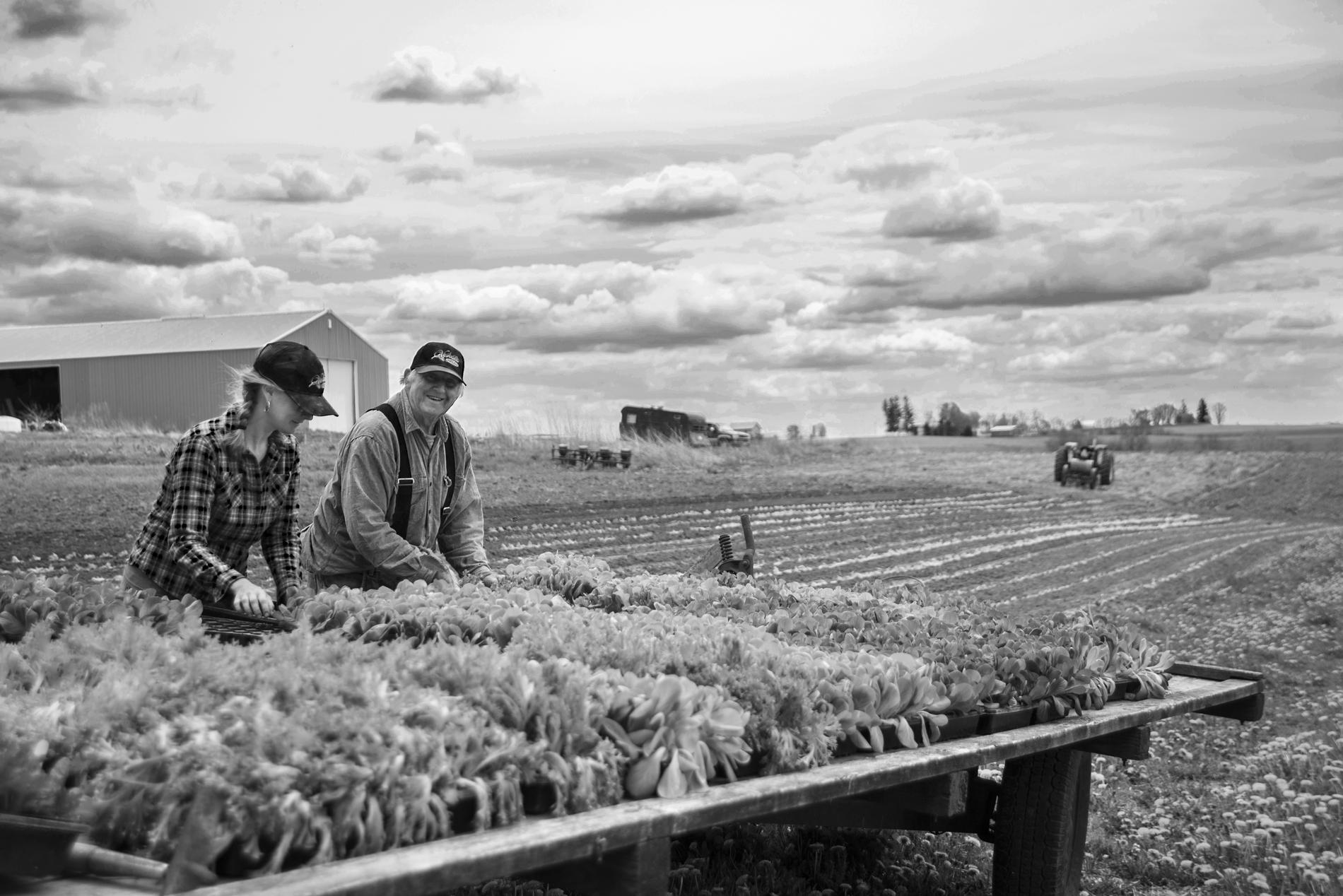 farming_site_perrier 09