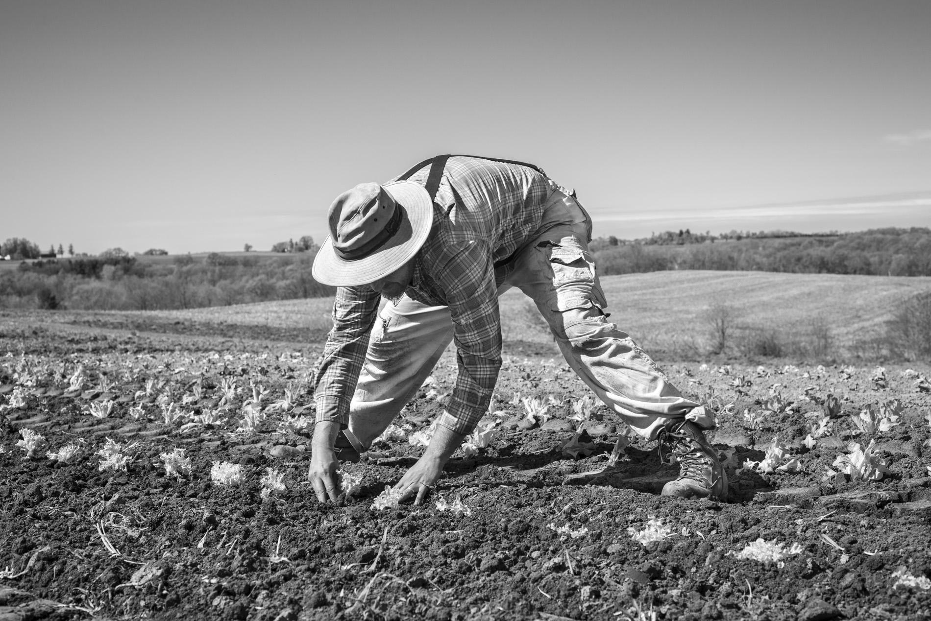 farming_site_perrier 10